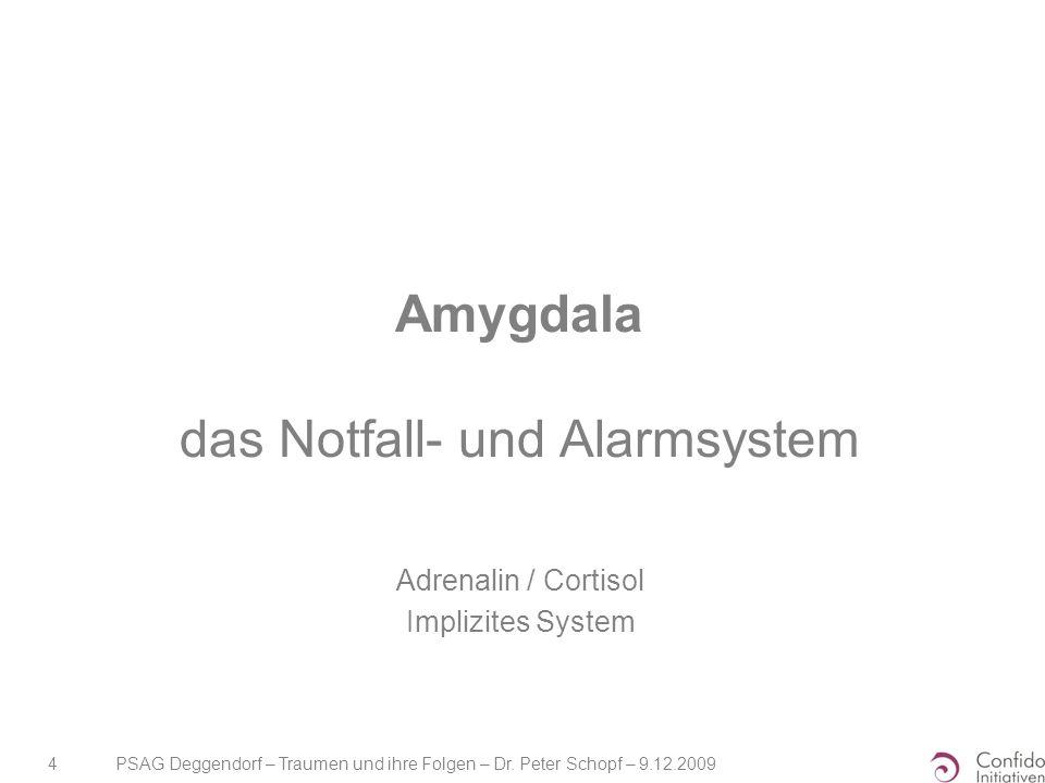 PSAG Deggendorf – Traumen und ihre Folgen – Dr. Peter Schopf – 9.12.2009 4 Amygdala das Notfall- und Alarmsystem Adrenalin / Cortisol Implizites Syste