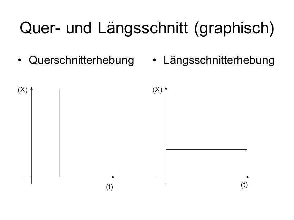 Quer- und Längsschnitt (graphisch) Längsschnitterhebung (X) (t) Querschnitterhebung (X) (t)