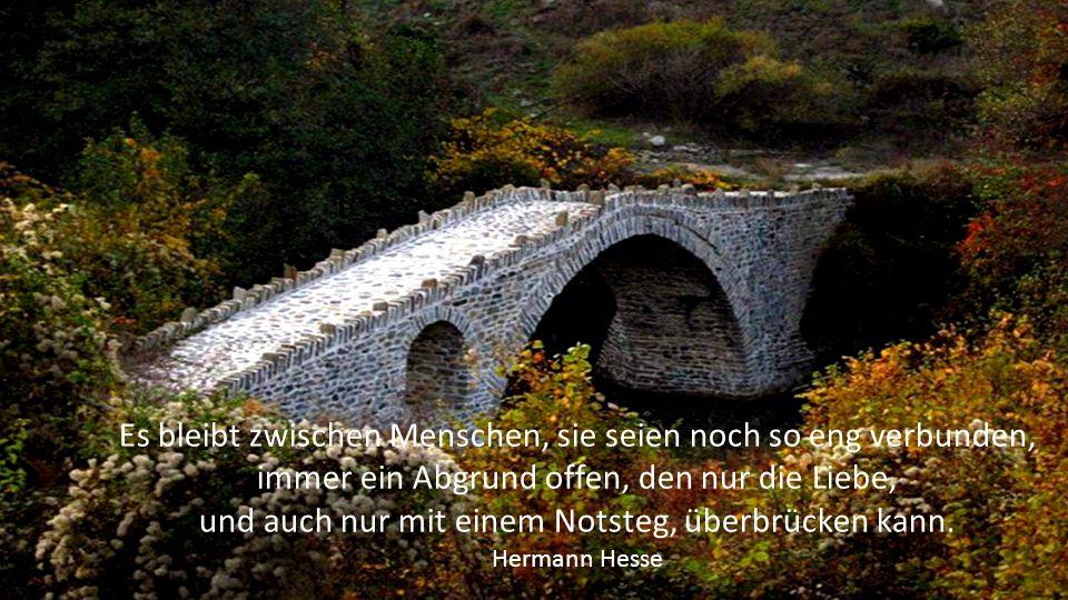 Das Leben ist eine Brücke von Seufzern über einen Strom von Tränen. Philip James Bailey