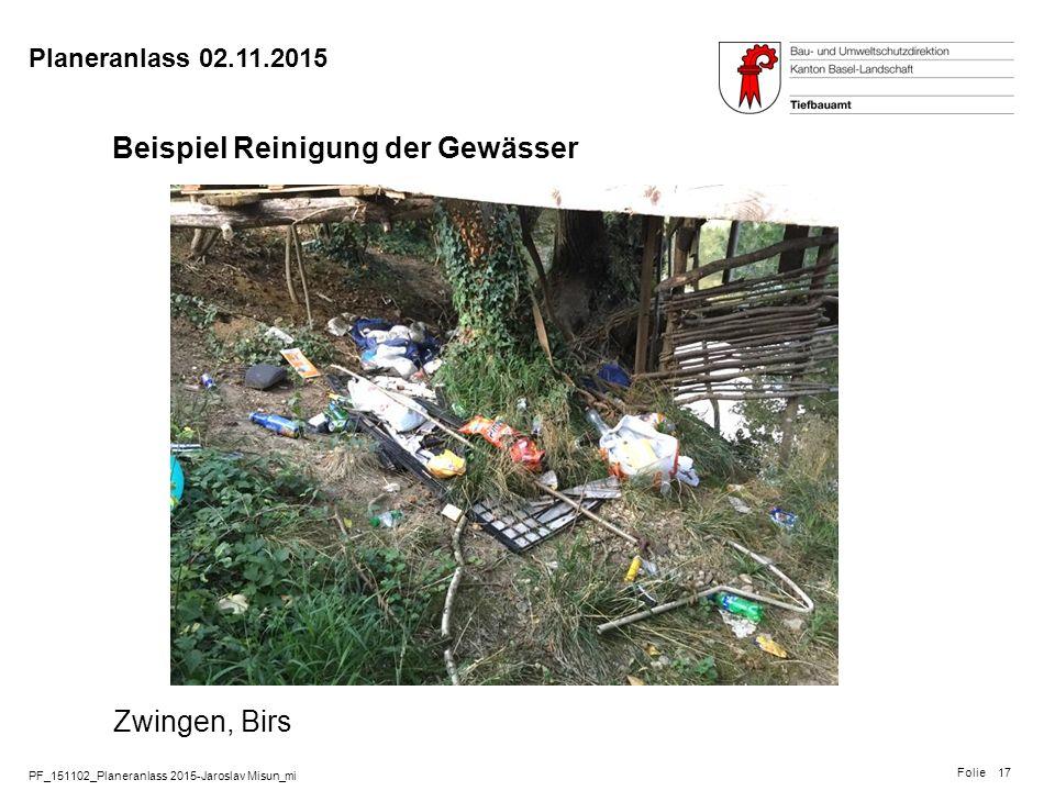 PF_151102_Planeranlass 2015-Jaroslav Misun_mi Folie Planeranlass 02.11.2015 17 Beispiel Reinigung der Gewässer Zwingen, Birs Schwemmgut im Ufergehölz