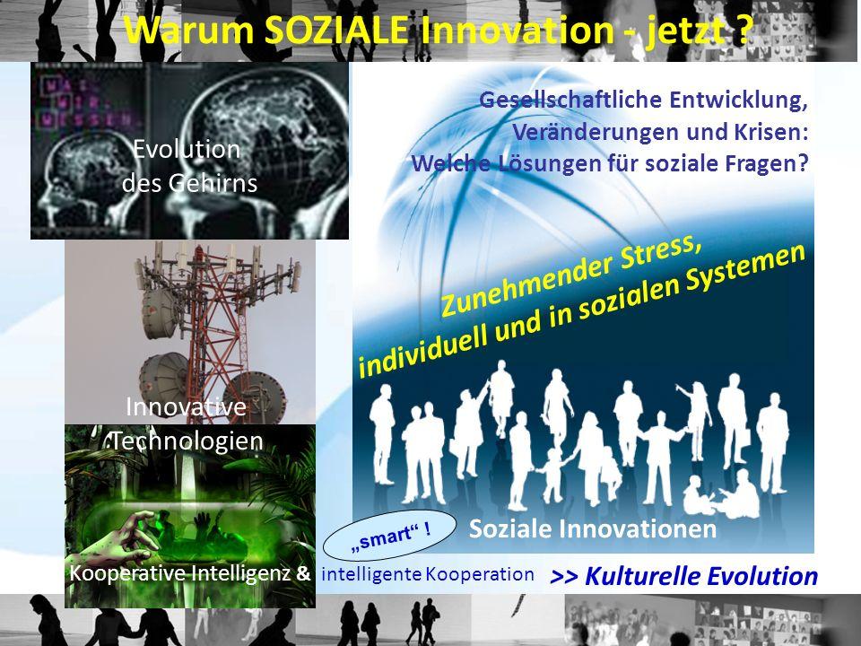 """Analytische Definition von sozialen Innovationen: """"Soziale Innovationen sind neue Praktiken von Individuen, Gruppen oder Organisationen zur Veränderung von Lebens- und Arbeitsbedingungen."""