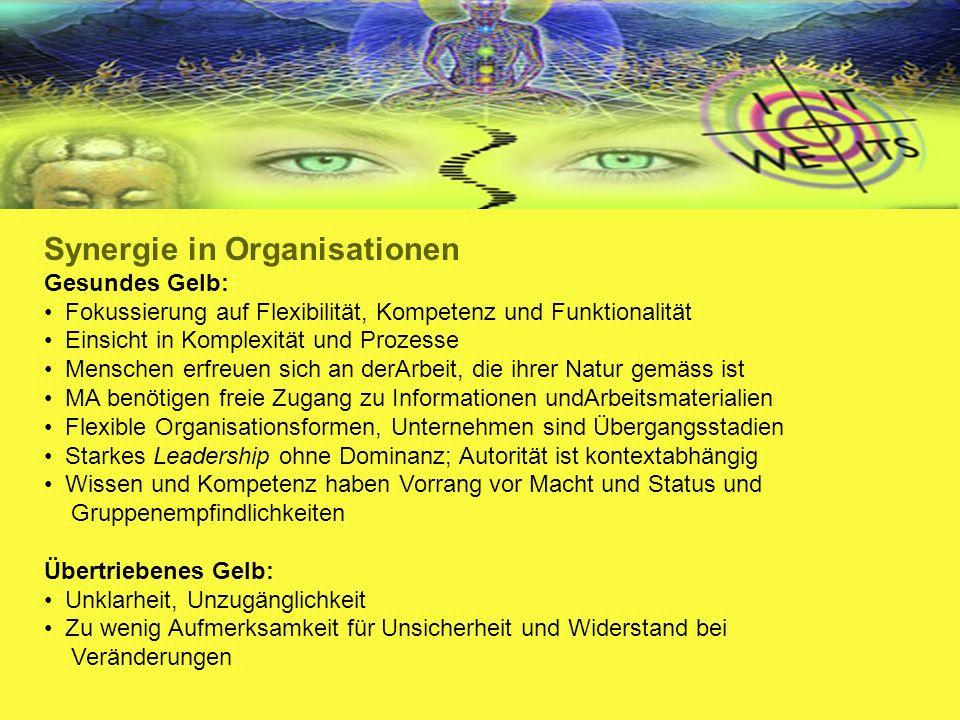 Synergie in Organisationen Gesundes Gelb: Fokussierung auf Flexibilität, Kompetenz und Funktionalität Einsicht in Komplexität und Prozesse Menschen er