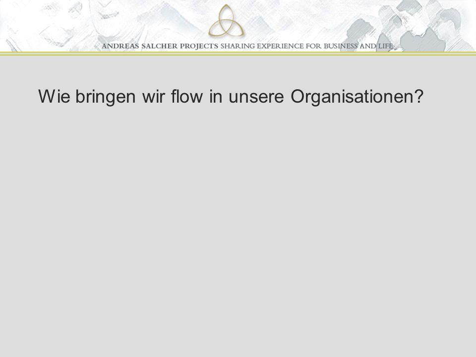 Wie bringen wir flow in unsere Organisationen