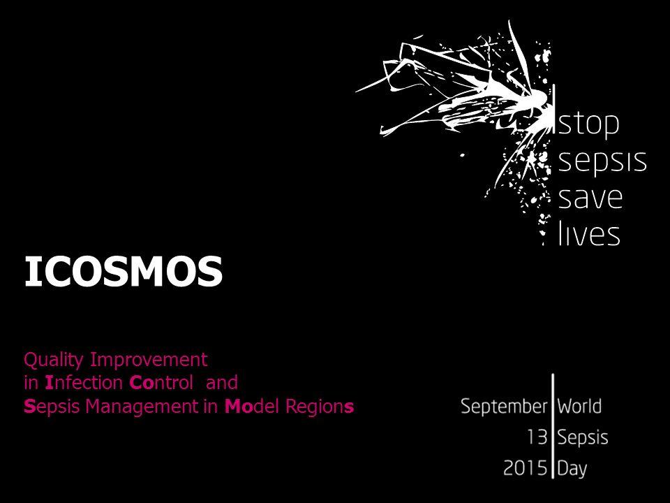Was bietet eine Teilnahme an ICOSMOS?