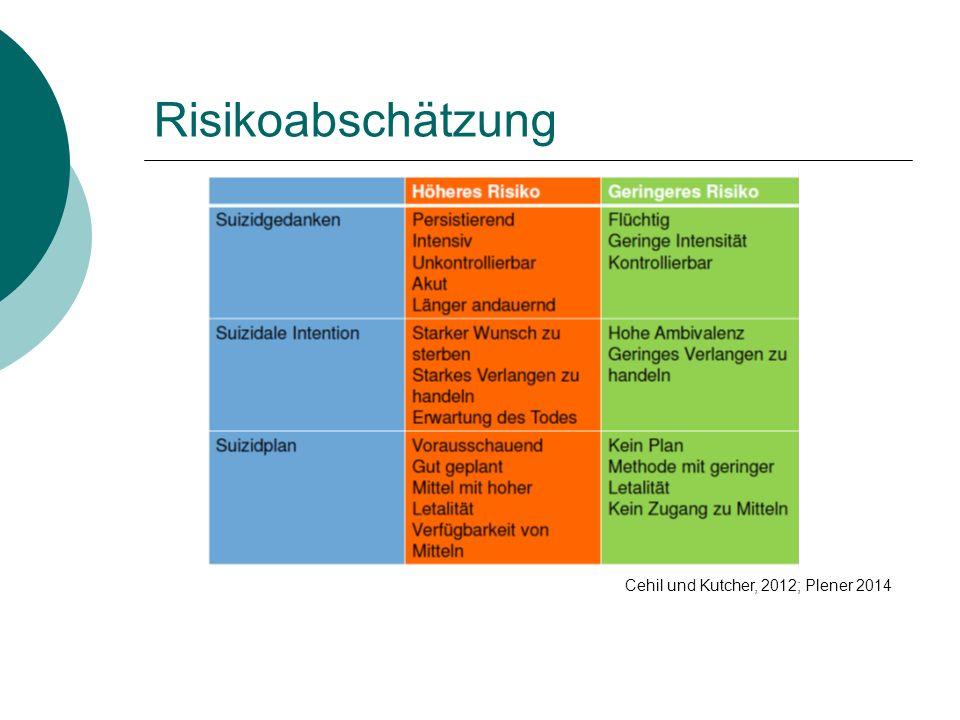 Risikoabschätzung Cehil und Kutcher, 2012; Plener 2014