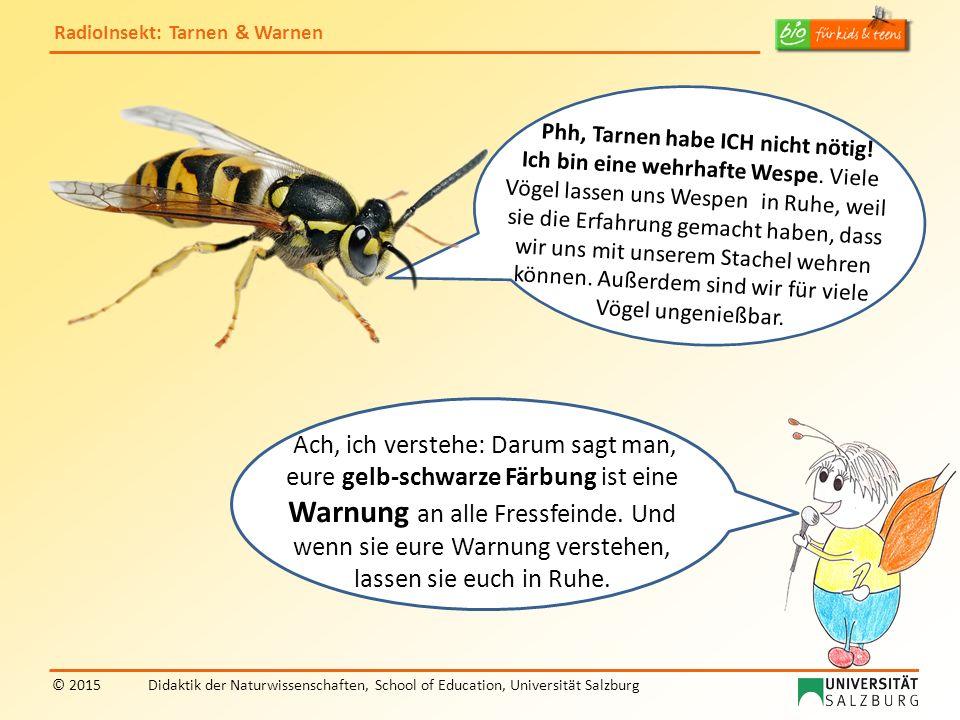 RadioInsekt: Tarnen & Warnen © 2015Didaktik der Naturwissenschaften, School of Education, Universität Salzburg Ach, ich verstehe: Darum sagt man, eure