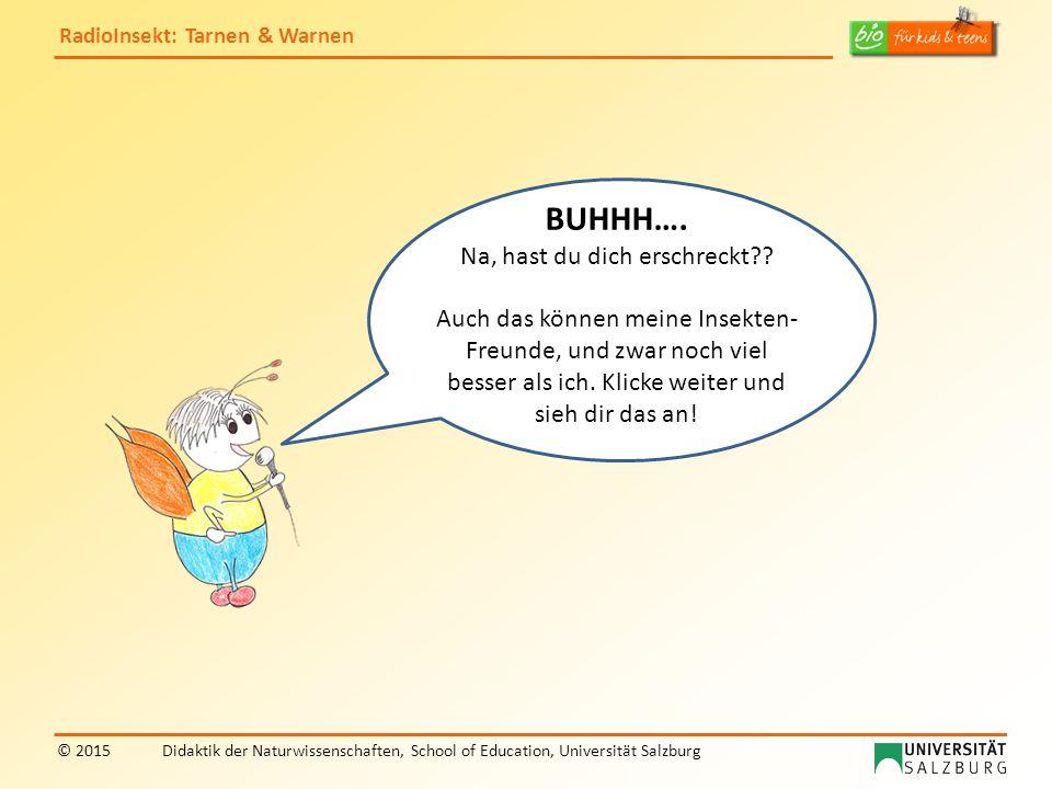 RadioInsekt: Tarnen & Warnen © 2015Didaktik der Naturwissenschaften, School of Education, Universität Salzburg BUHHH…. Na, hast du dich erschreckt?? A