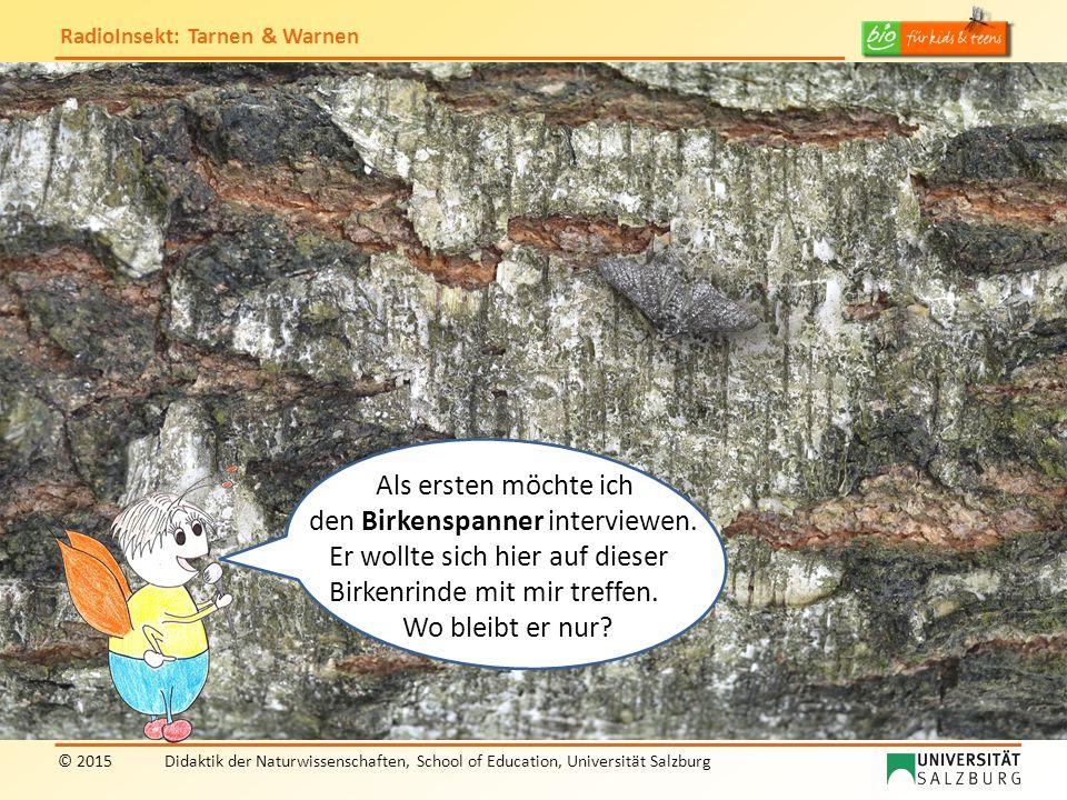 RadioInsekt: Tarnen & Warnen © 2015Didaktik der Naturwissenschaften, School of Education, Universität Salzburg Wow, du bist ja hervorragend getarnt durch die Farbe und Zeichnung deiner Flügel.