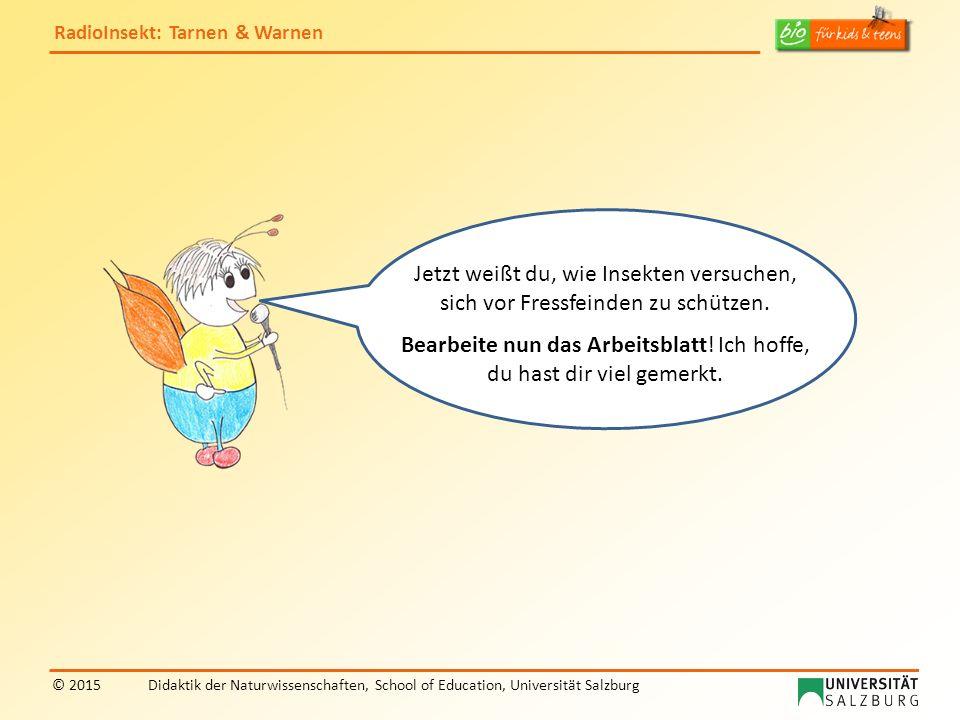 RadioInsekt: Tarnen & Warnen © 2015Didaktik der Naturwissenschaften, School of Education, Universität Salzburg Jetzt weißt du, wie Insekten versuchen,
