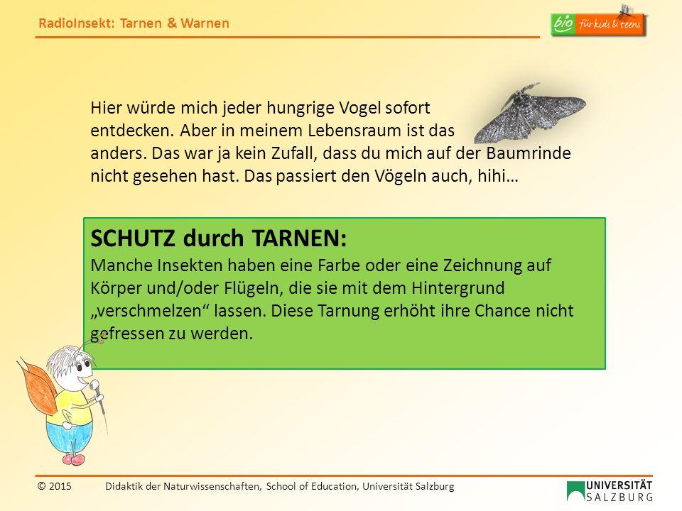RadioInsekt: Tarnen & Warnen © 2015Didaktik der Naturwissenschaften, School of Education, Universität Salzburg Ich zeige dir noch weitere Meister der Tarnung.