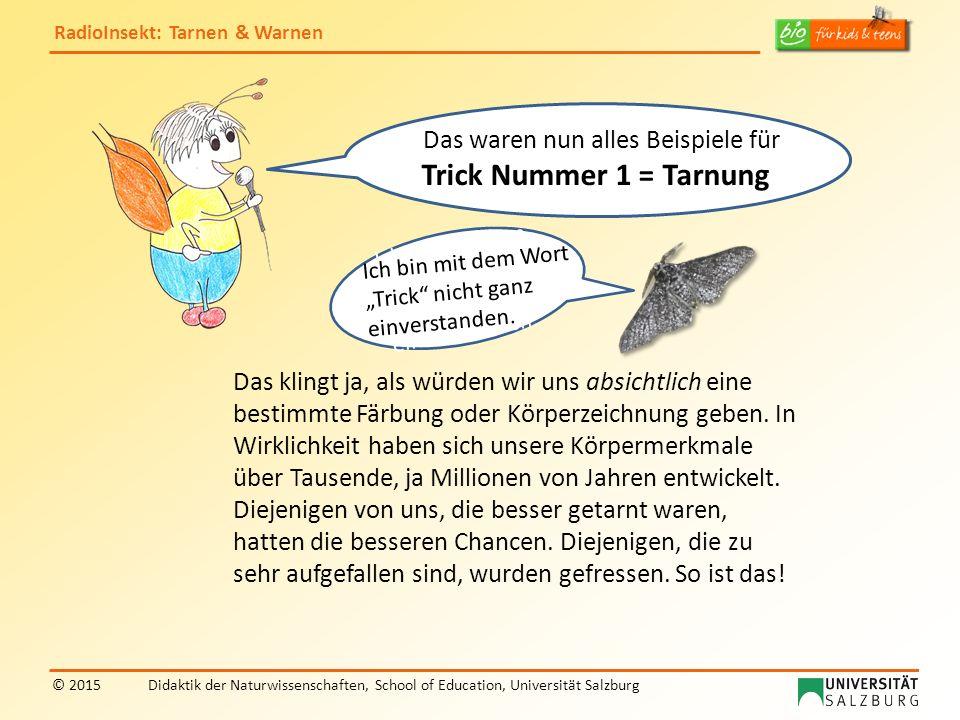 RadioInsekt: Tarnen & Warnen © 2015Didaktik der Naturwissenschaften, School of Education, Universität Salzburg Ach, ich verstehe: Darum sagt man, eure gelb-schwarze Färbung ist eine Warnung an alle Fressfeinde.