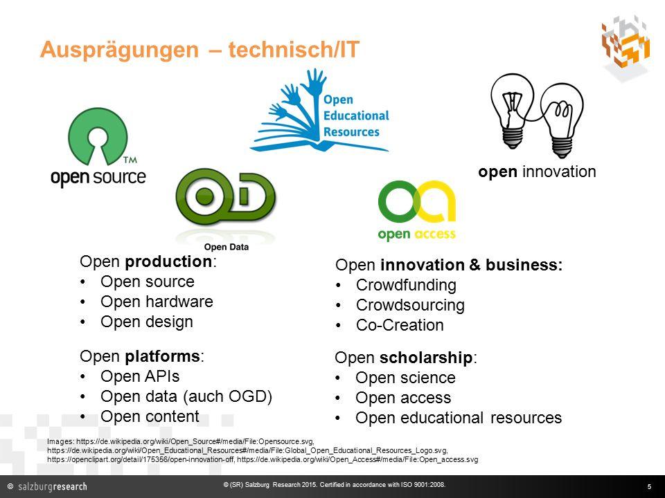© Ausprägungen – technisch/IT 5 © (SR) Salzburg Research 2015.