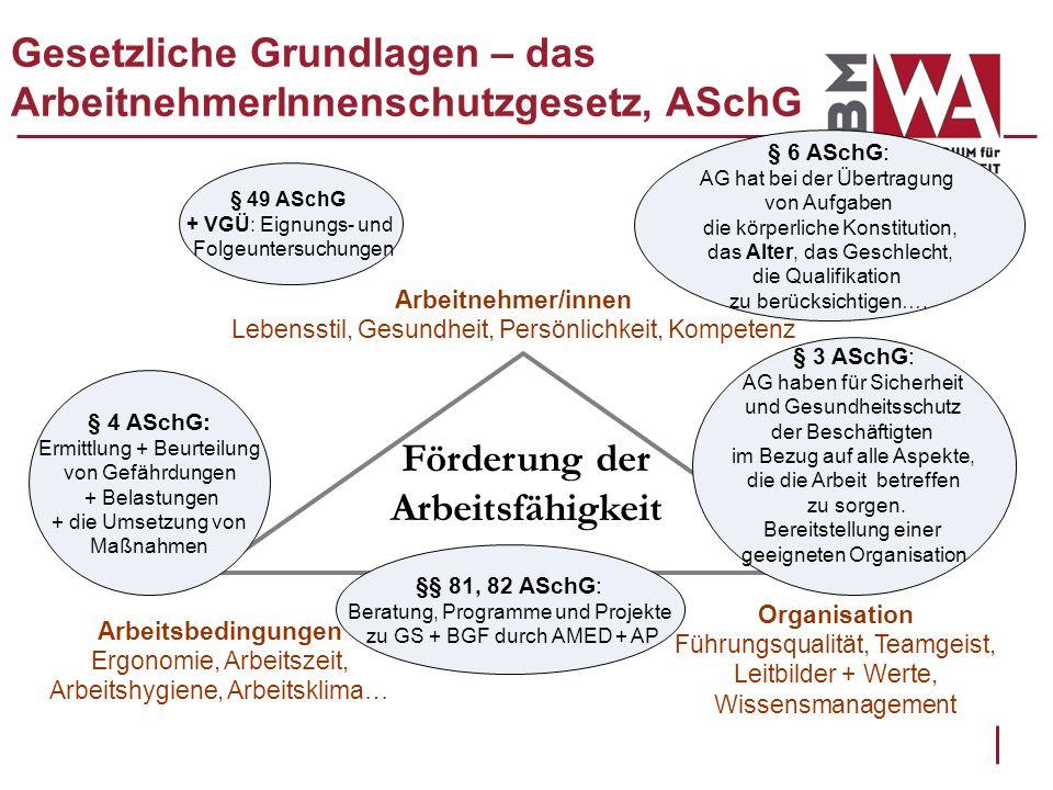 Gesetzliche Grundlagen – das ArbeitnehmerInnenschutzgesetz, ASchG Arbeitnehmer/innen Lebensstil, Gesundheit, Persönlichkeit, Kompetenz Förderung der A