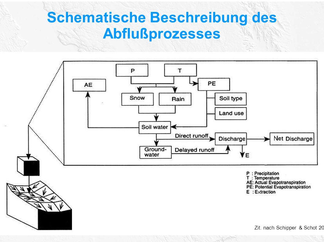 Schematische Beschreibung des Abflußprozesses Zit. nach Schipper & Schot 2004