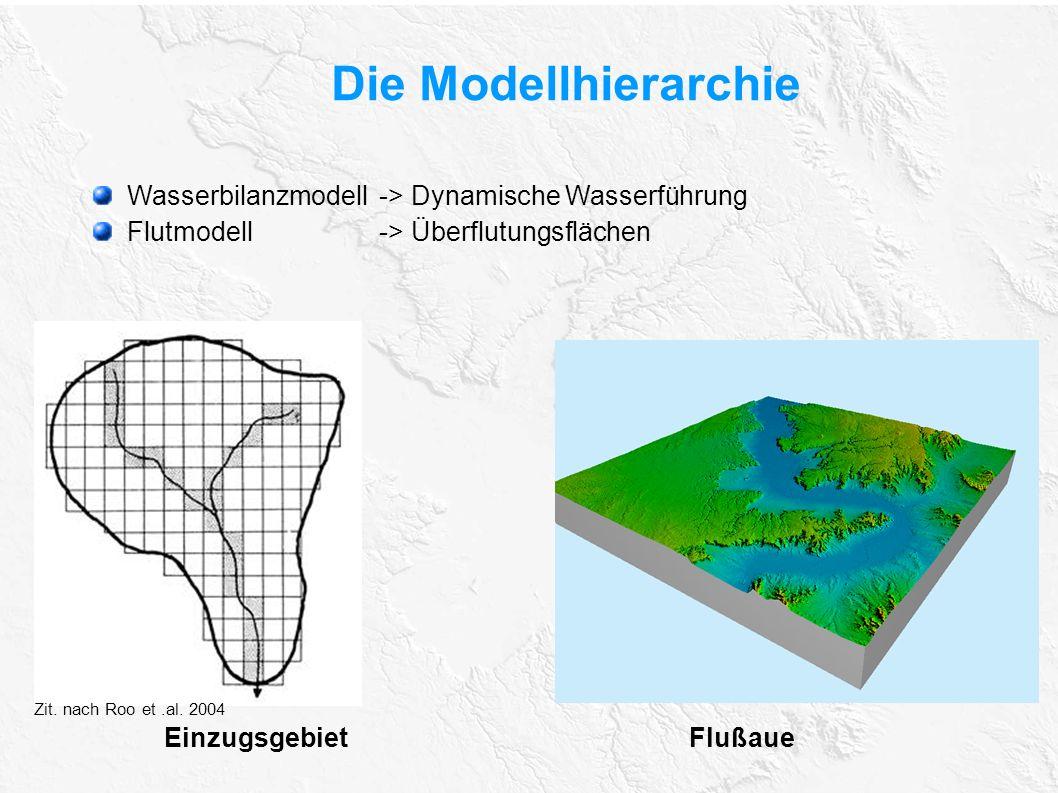 Die Modellhierarchie Wasserbilanzmodell-> Dynamische Wasserführung Flutmodell-> Überflutungsflächen Einzugsgebiet Flußaue Zit. nach Roo et.al. 2004