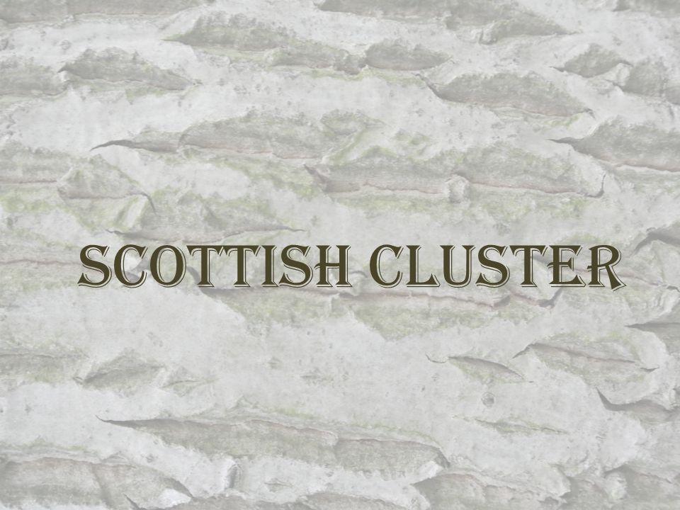 Scottish Cluster