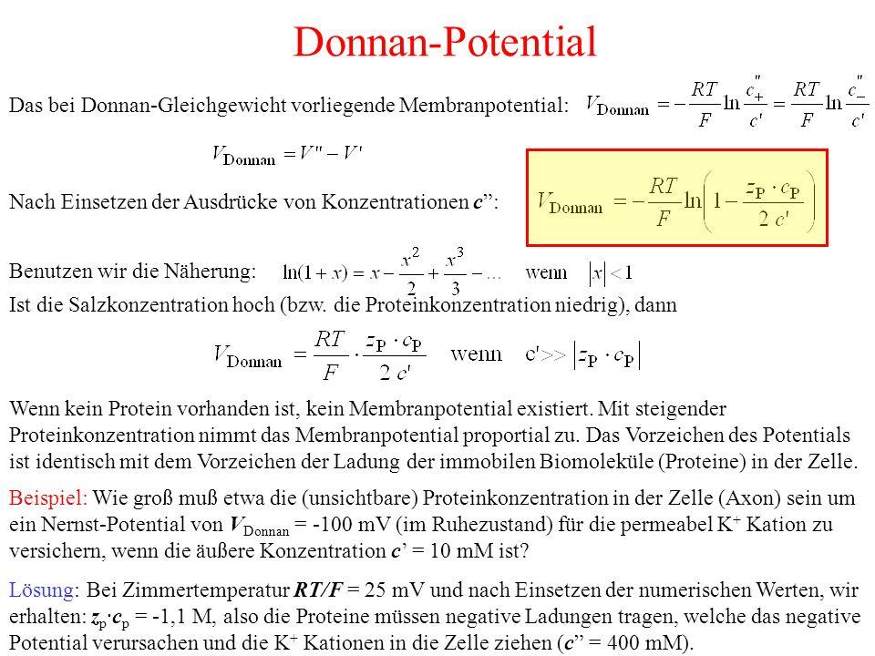 Donnan-Potential Das bei Donnan-Gleichgewicht vorliegende Membranpotential: Nach Einsetzen der Ausdrücke von Konzentrationen c : Benutzen wir die Näherung: Ist die Salzkonzentration hoch (bzw.