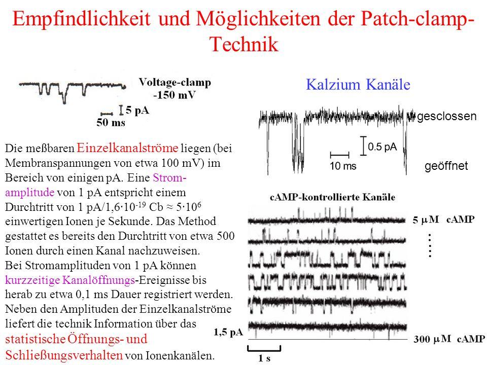Empfindlichkeit und Möglichkeiten der Patch-clamp- Technik gesclossen geöffnet Kalzium Kanäle Die meßbaren Einzelkanalströme liegen (bei Membranspannungen von etwa 100 mV) im Bereich von einigen pA.