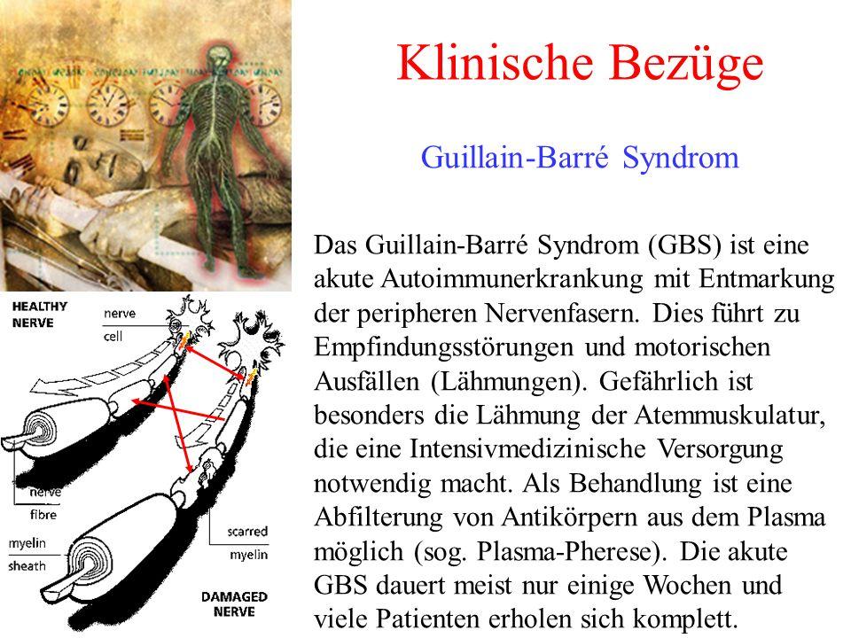 Klinische Bezüge Guillain-Barré Syndrom Das Guillain-Barré Syndrom (GBS) ist eine akute Autoimmunerkrankung mit Entmarkung der peripheren Nervenfasern.