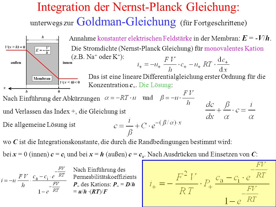 Beispiel: Ionenströme bei der Nervenerregung Spannungsklemm-Experiment für eine Depolarisation vom Ruhepotential (-60 mV) auf V = 0.