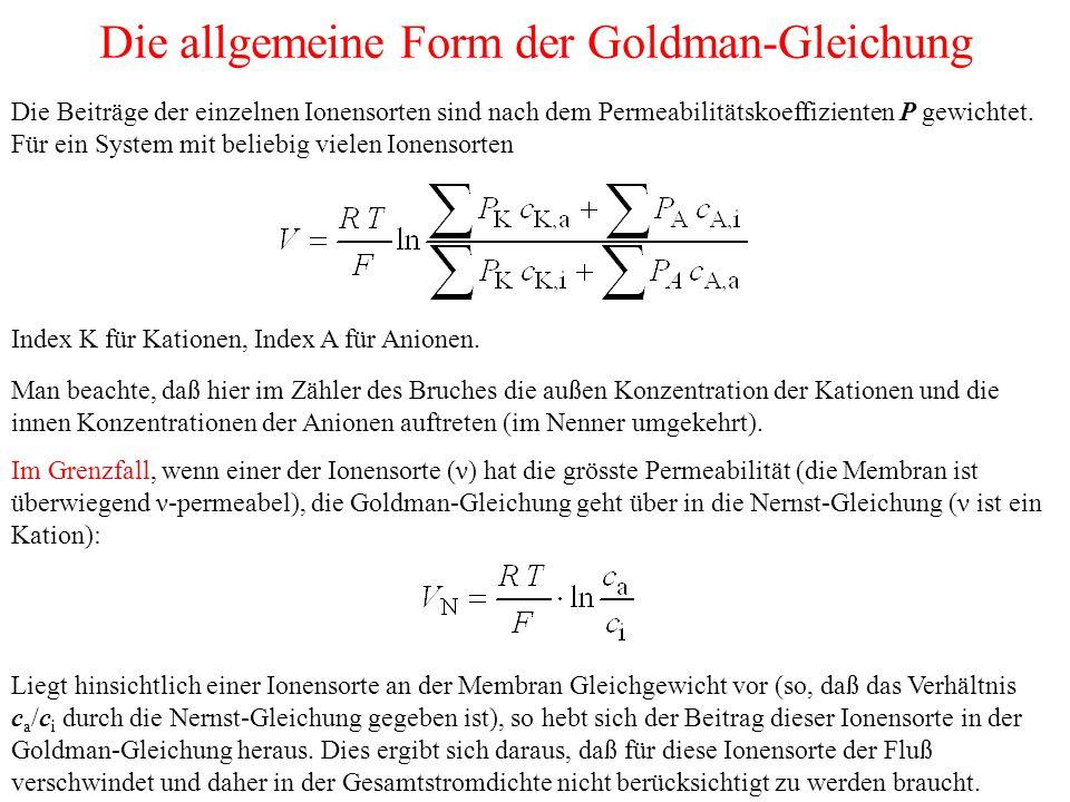 Die allgemeine Form der Goldman-Gleichung Die Beiträge der einzelnen Ionensorten sind nach dem Permeabilitätskoeffizienten P gewichtet. Für ein System