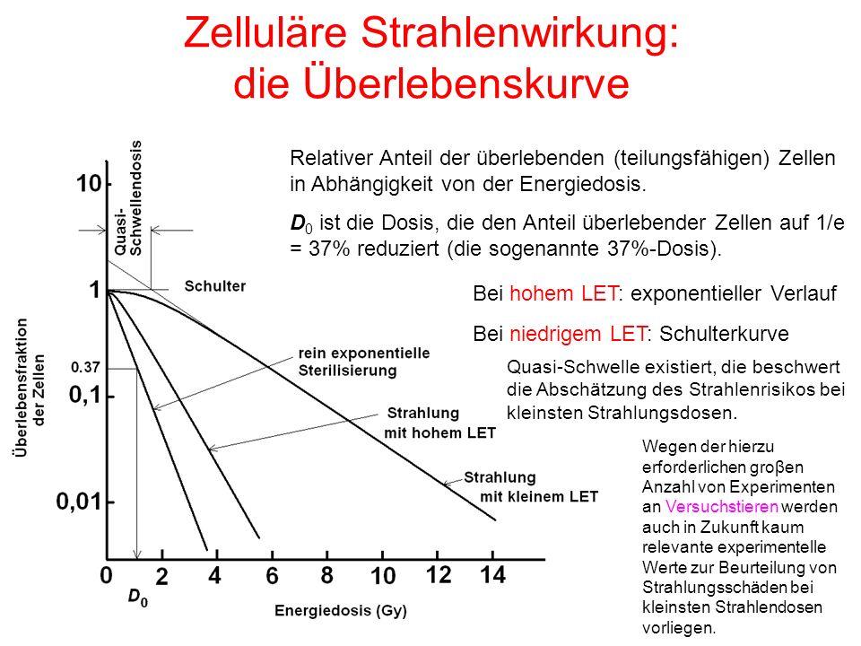 Zelluläre Strahlenwirkung: die Überlebenskurve Relativer Anteil der überlebenden (teilungsfähigen) Zellen in Abhängigkeit von der Energiedosis. D 0 is
