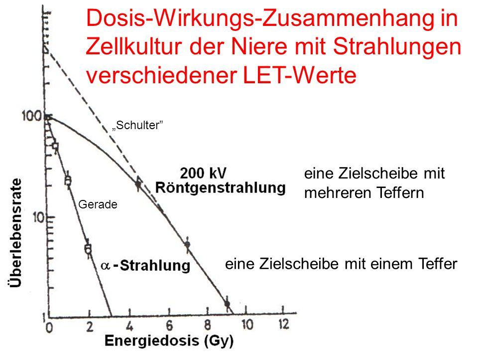 """Dosis-Wirkungs-Zusammenhang in Zellkultur der Niere mit Strahlungen verschiedener LET-Werte """"Schulter"""" Gerade eine Zielscheibe mit einem Teffer eine Z"""