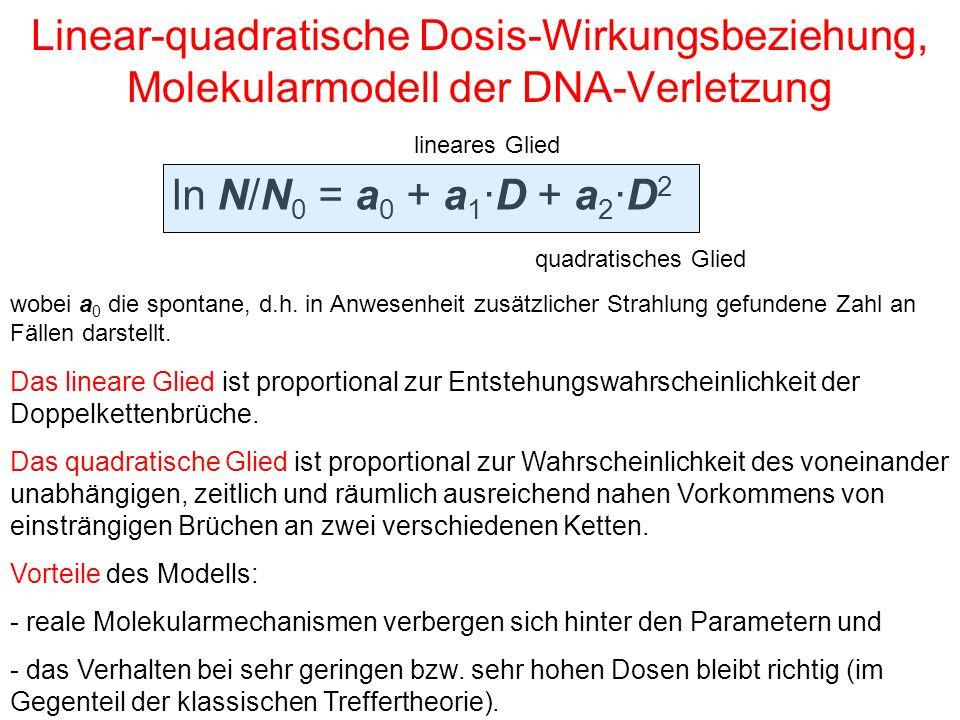 Linear-quadratische Dosis-Wirkungsbeziehung, Molekularmodell der DNA-Verletzung wobei a 0 die spontane, d.h. in Anwesenheit zusätzlicher Strahlung gef