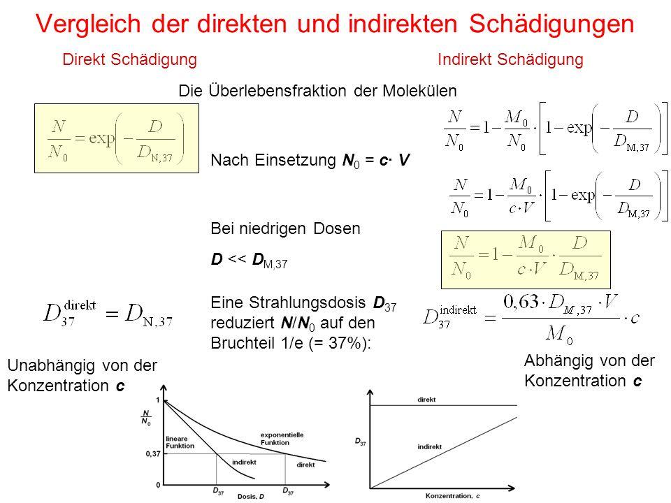 Vergleich der direkten und indirekten Schädigungen Direkt SchädigungIndirekt Schädigung Die Überlebensfraktion der Molekülen Nach Einsetzung N 0 = c·
