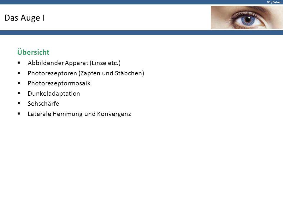 05 / Sehen Das Auge I Übersicht  Abbildender Apparat (Linse etc.)  Photorezeptoren (Zapfen und Stäbchen)  Photorezeptormosaik  Dunkeladaptation 