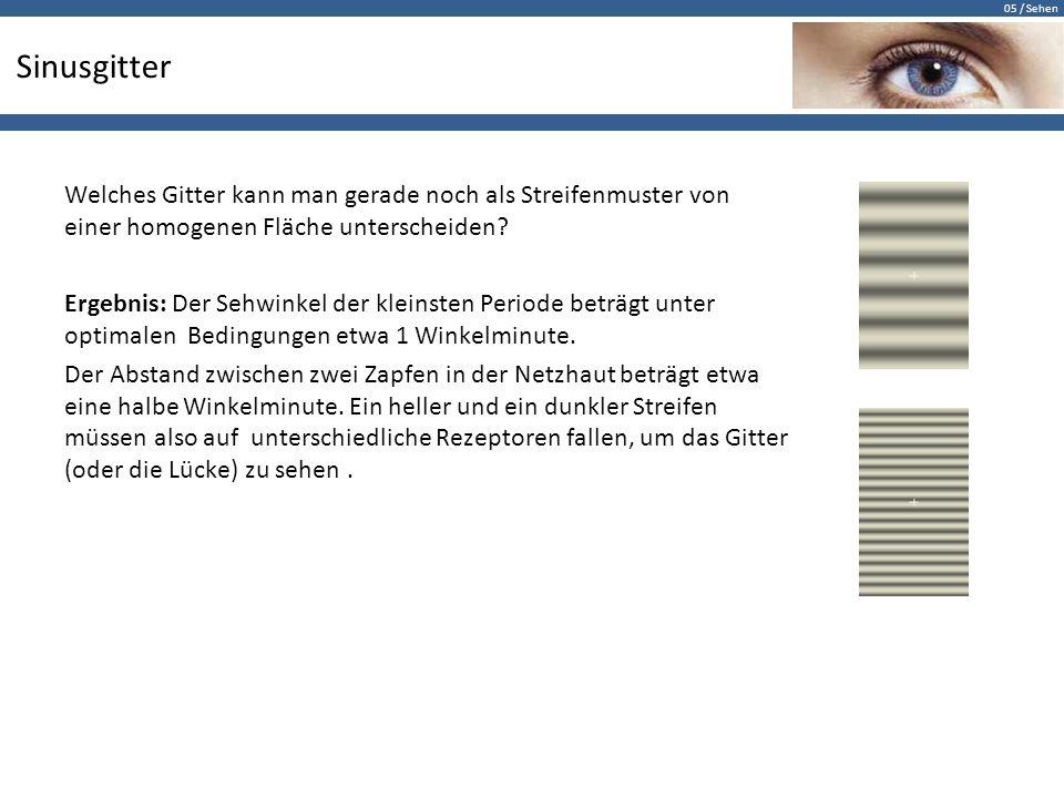 05 / Sehen Sinusgitter Welches Gitter kann man gerade noch als Streifenmuster von einer homogenen Fläche unterscheiden? Ergebnis: Der Sehwinkel der kl