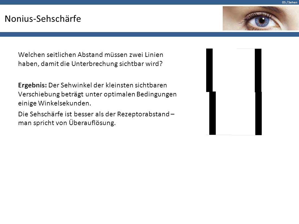 05 / Sehen Nonius-Sehschärfe Welchen seitlichen Abstand müssen zwei Linien haben, damit die Unterbrechung sichtbar wird? Ergebnis: Der Sehwinkel der k