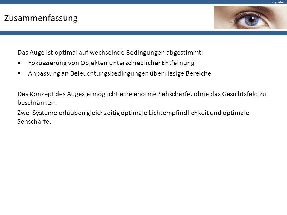 05 / Sehen Zusammenfassung Das Auge ist optimal auf wechselnde Bedingungen abgestimmt:  Fokussierung von Objekten unterschiedlicher Entfernung  Anpa