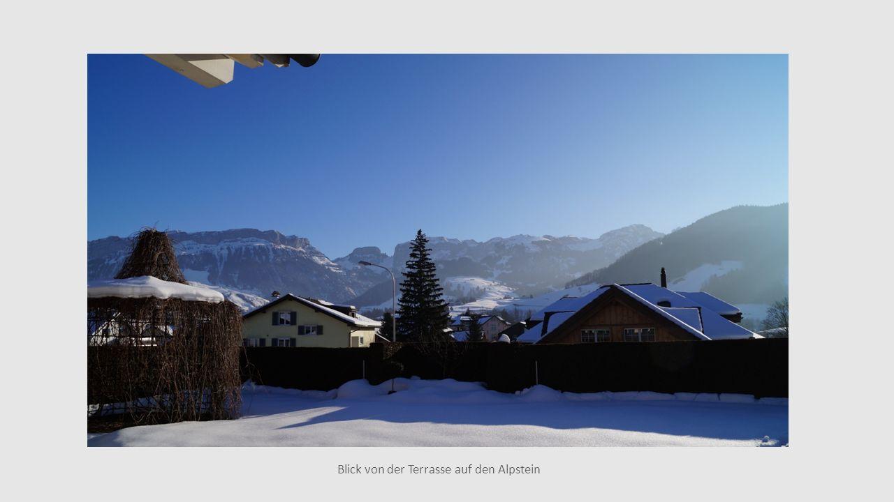 Blick von der Terrasse auf den Alpstein