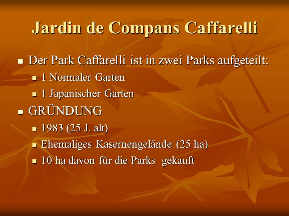 Der Park Caffarelli ist in zwei Parks aufgeteilt: Der Park Caffarelli ist in zwei Parks aufgeteilt: 1 Normaler Garten 1 Normaler Garten 1 Japanischer Garten 1 Japanischer Garten GRÜNDUNG GRÜNDUNG 1983 (25 J.