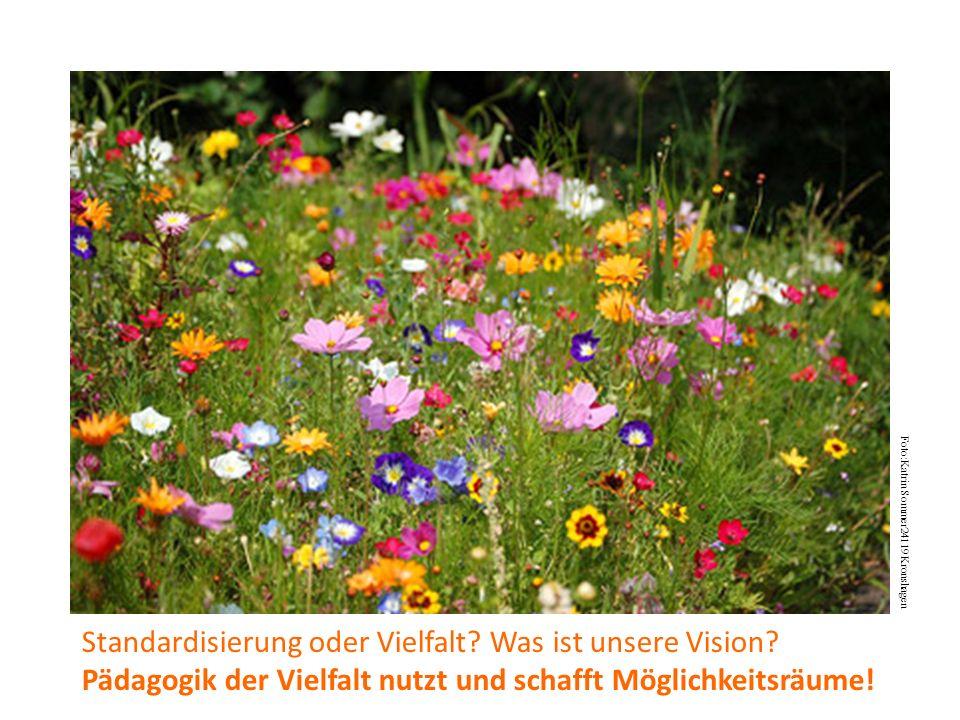 Foto:Katrin Sommer24119 Kronshagen Standardisierung oder Vielfalt.