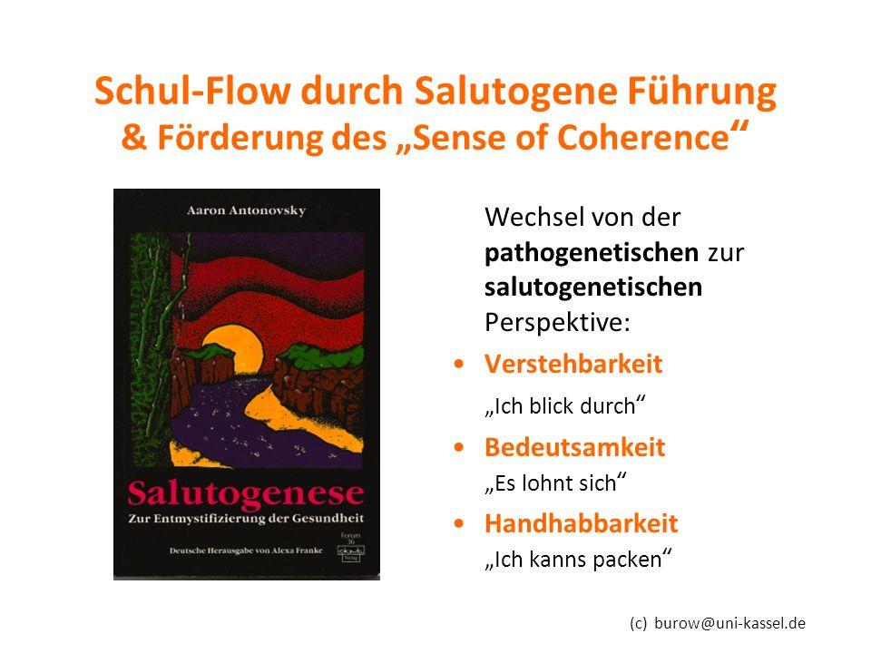 """(c) burow@uni-kassel.de Schul-Flow durch Salutogene Führung & Förderung des """"Sense of Coherence Wechsel von der pathogenetischen zur salutogenetischen Perspektive: Verstehbarkeit """"Ich blick durch Bedeutsamkeit """"Es lohnt sich Handhabbarkeit """"Ich kanns packen"""