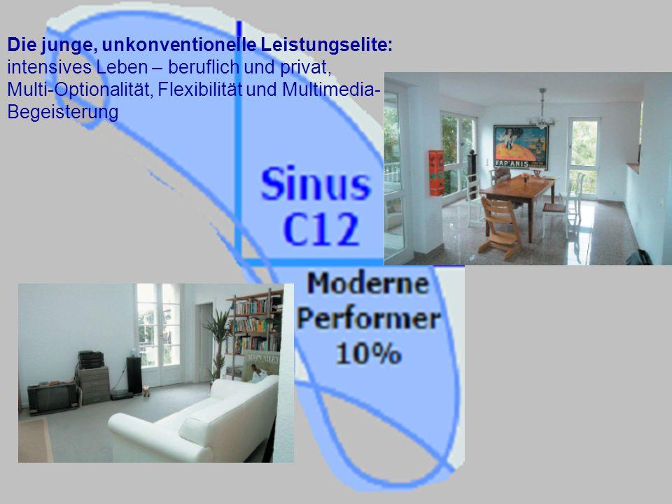 Die junge, unkonventionelle Leistungselite: intensives Leben – beruflich und privat, Multi-Optionalität, Flexibilität und Multimedia- Begeisterung