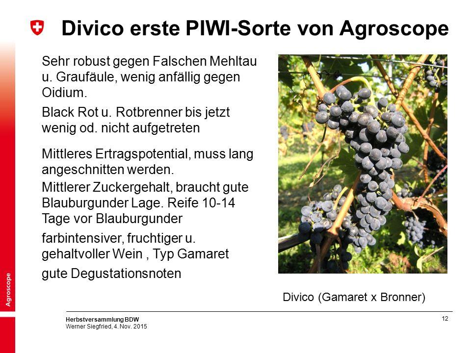 12 Herbstversammlung BDW Werner Siegfried, 4. Nov. 2015 Divico erste PIWI-Sorte von Agroscope Divico (Gamaret x Bronner) Sehr robust gegen Falschen Me