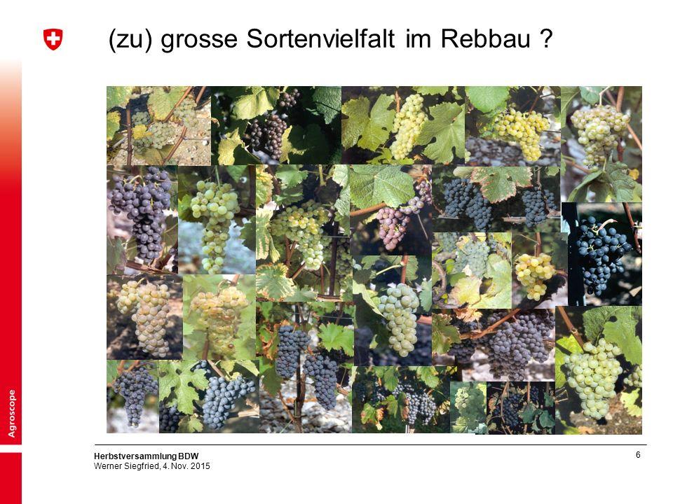 6 Herbstversammlung BDW Werner Siegfried, 4. Nov. 2015 (zu) grosse Sortenvielfalt im Rebbau ?