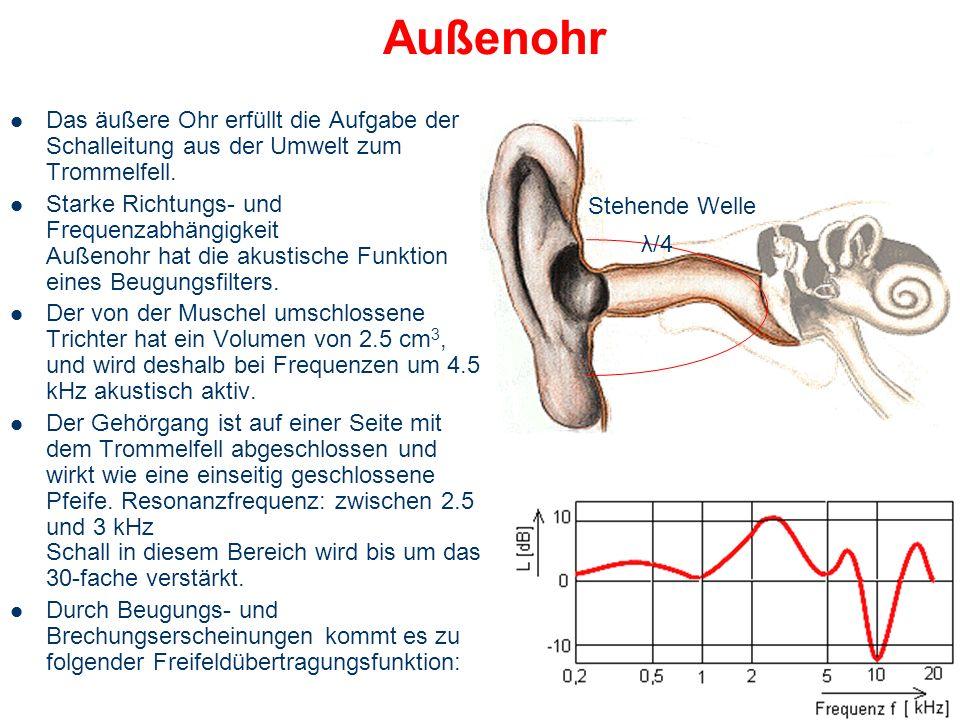 Außenohr Ohrmuschel – Knorpelig, faltig – fängt Schall ein – Schallmodulation je nach Richtung Gehörgang – leichte S-Form – Orgelpfeifen-resonanz: ver