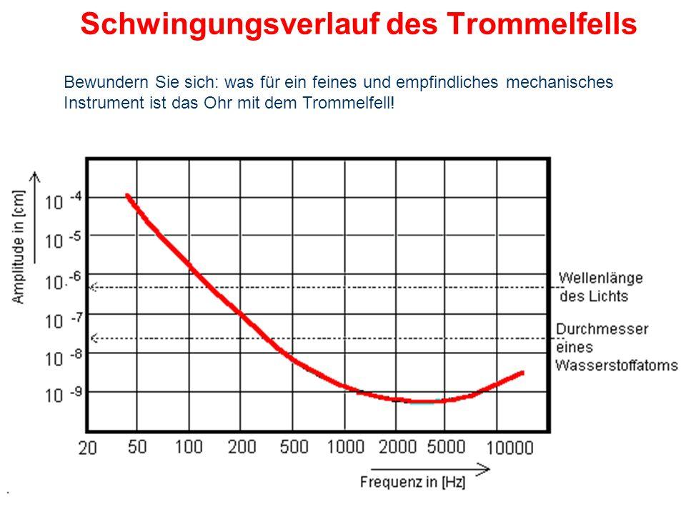 Schwingungsmuster des Trommelfells Bis zu einer Frequenz von 2,4 kHz schwingt das gesamte Trommelfell einschließlich des Hammergriffs als starre konis
