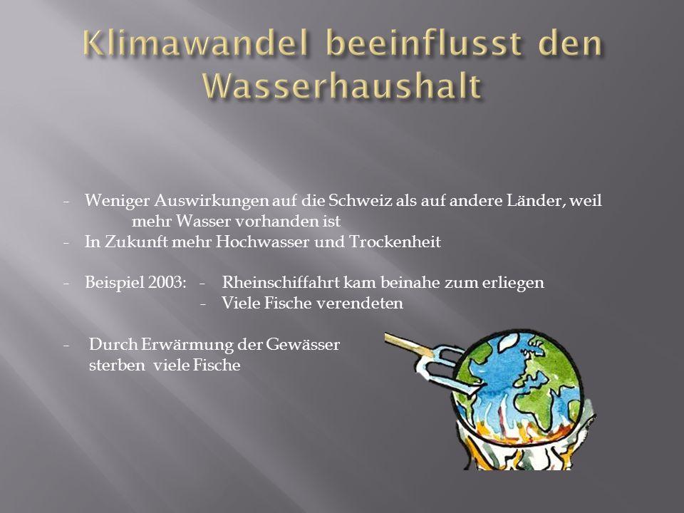 -Weniger Auswirkungen auf die Schweiz als auf andere Länder, weil mehr Wasser vorhanden ist -In Zukunft mehr Hochwasser und Trockenheit -Beispiel 2003: - Rheinschiffahrt kam beinahe zum erliegen -Viele Fische verendeten - Durch Erwärmung der Gewässer sterben viele Fische