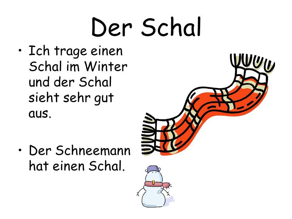 Der Schal Ich trage einen Schal im Winter und der Schal sieht sehr gut aus. Der Schneemann hat einen Schal.