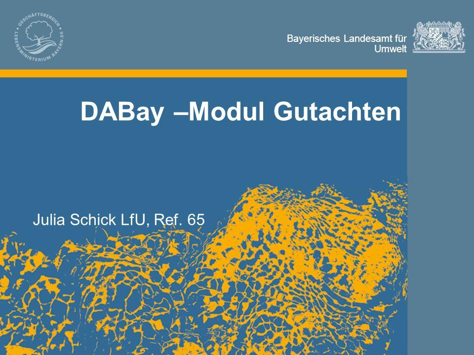 Bayerisches Landesamt für Umwelt Bayerisches Landesamt für Umwelt DABay –Modul Gutachten Julia Schick LfU, Ref. 65
