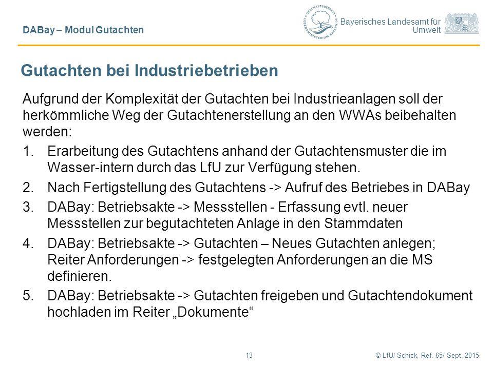 Bayerisches Landesamt für Umwelt © LfU/ Schick, Ref. 65/ Sept. 201513 DABay – Modul Gutachten Gutachten bei Industriebetrieben Aufgrund der Komplexitä