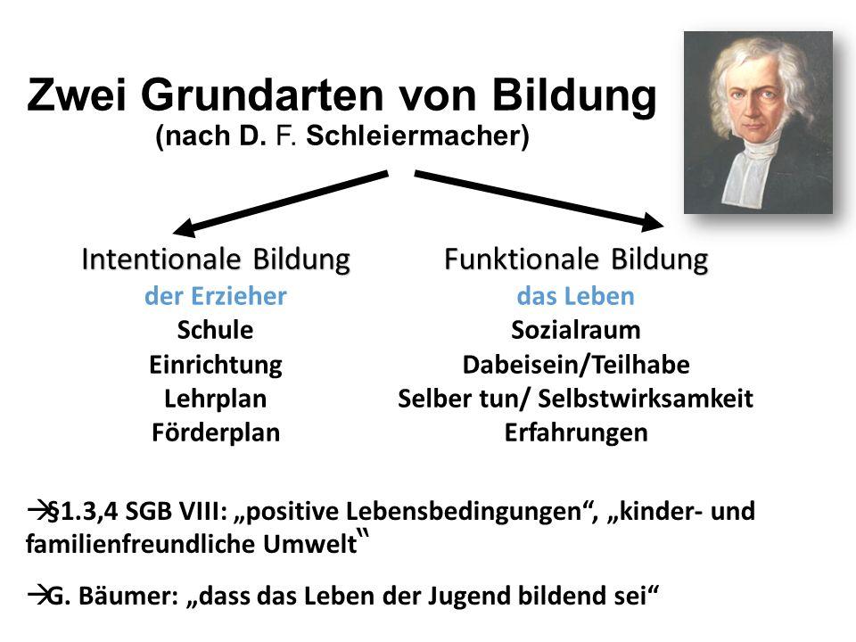 Zwei Grundarten von Bildung (nach D. F. Schleiermacher) Intentionale Bildung der Erzieher Schule Einrichtung Lehrplan Förderplan Funktionale Bildung d