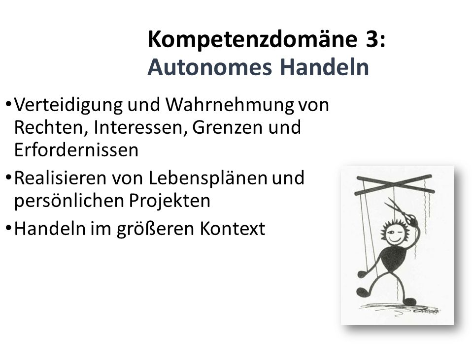 Kompetenzdomäne 3: Autonomes Handeln Verteidigung und Wahrnehmung von Rechten, Interessen, Grenzen und Erfordernissen Realisieren von Lebensplänen und