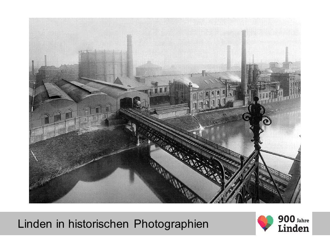 Linden in historischen Photographien