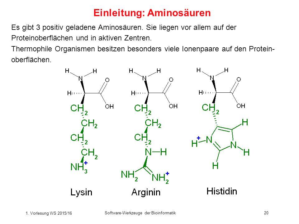 1. Vorlesung WS 2015/16 Software-Werkzeuge der Bioinformatik20 Es gibt 3 positiv geladene Aminosäuren. Sie liegen vor allem auf der Proteinoberflächen